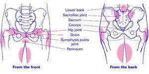 Cambridge pelvic pain